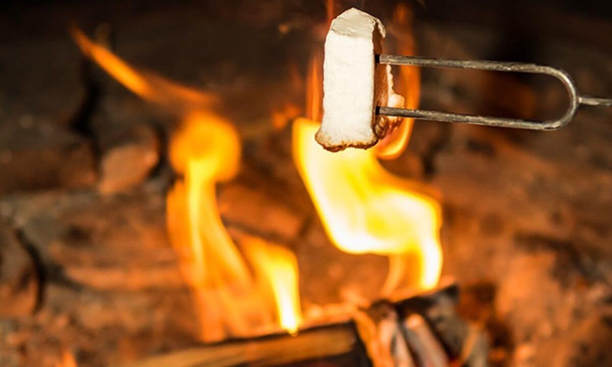 伊豆シャボテンヴィレッジ 焼きマシュマロ写真